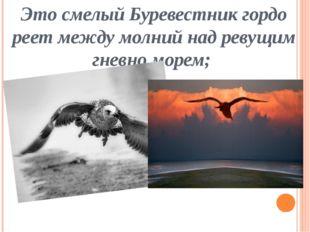 Это смелый Буревестник гордо реет между молний над ревущим гневно морем;