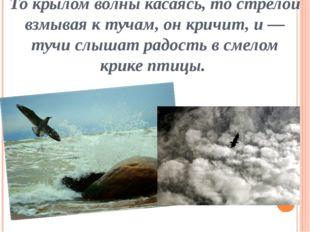 То крылом волны касаясь, то стрелой взмывая к тучам, он кричит, и — тучи слыш
