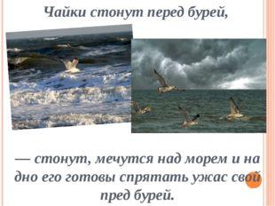 Чайки стонут перед бурей, — стонут, мечутся над морем и на дно его готовы спр