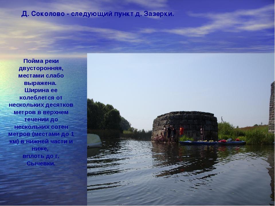 Д. Соколово - следующий пункт д. Зазерки. Пойма реки двусторонняя, местами сл...