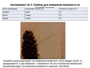 Эксперимент № 4. Прибор для измерения влажности из еловой шишки. Чешуйки шишк