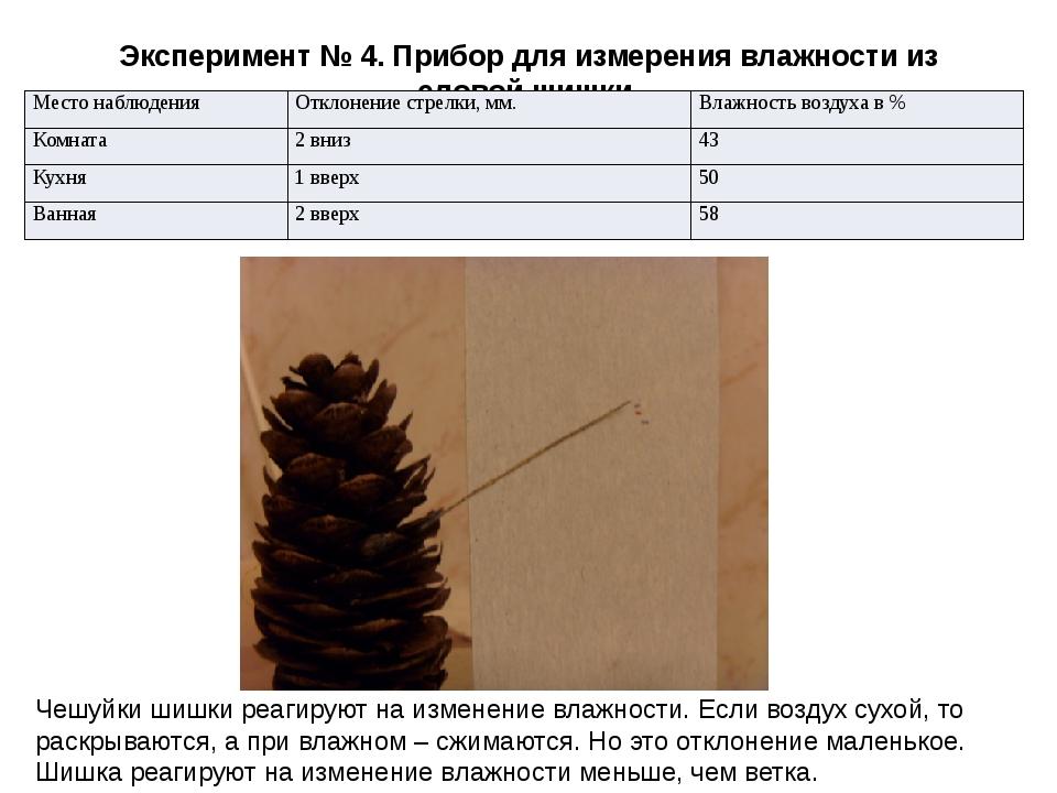 Эксперимент № 4. Прибор для измерения влажности из еловой шишки. Чешуйки шишк...