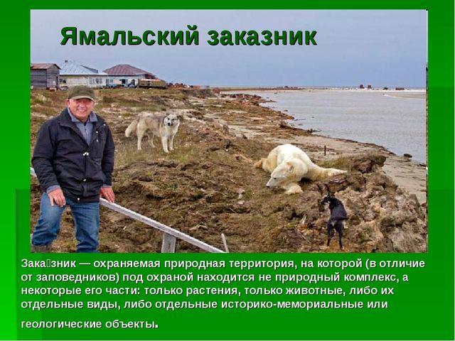Ямальский заказник Зака́зник — охраняемая природная территория, на которой (...