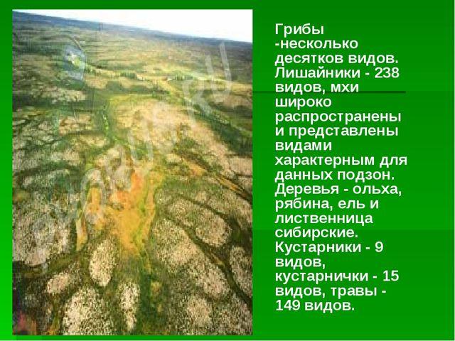Грибы -несколько десятков видов. Лишайники - 238 видов, мхи широко распростра...