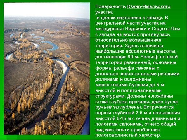 ПоверхностьЮжно-Ямальского участка в целом наклонена к западу. В центрально...