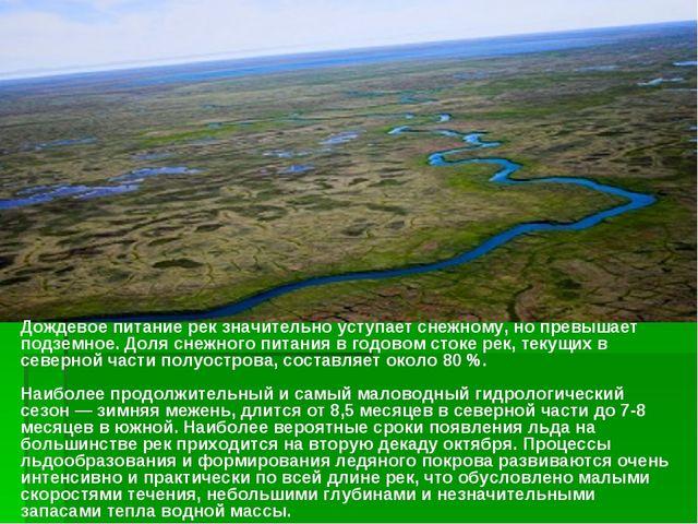 Дождевое питание рек значительно уступает снежному, но превышает подземное. Д...