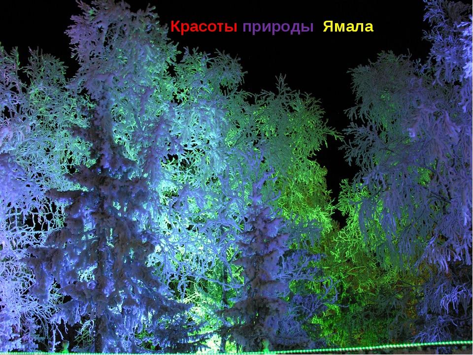 Красоты природы Ямала