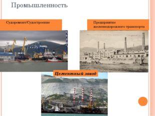 Промышленность Судоремонт/Судостроение Предприятие железнодорожного транспорт