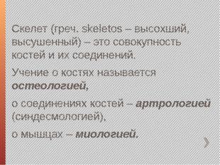 Скелет (греч. skeletos – высохший, высушенный) – это совокупность костей и их