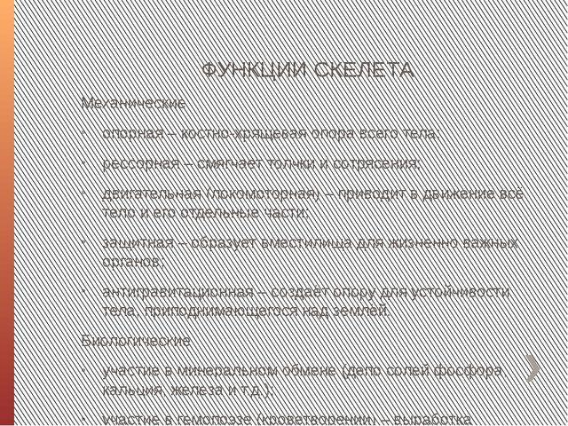 ФУНКЦИИ СКЕЛЕТА Механические опорная – костно-хрящевая опора всего тела; ресс...