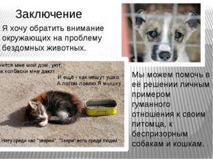 Заключение  Я хочу обратить внимание окружающих на проблему бездомных животн