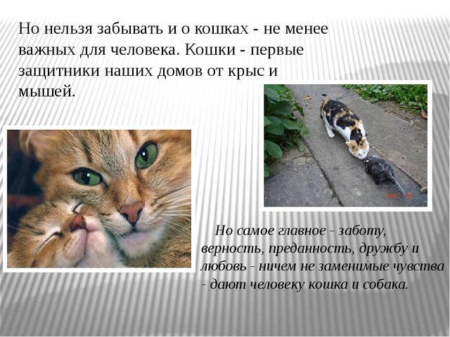 Но нельзя забывать и о кошках - не менее важных для человека. Кошки - первые...