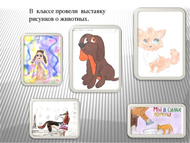 В классе провели выставку рисунков о животных.