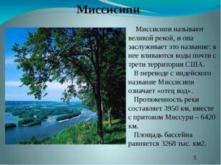 Миссисипи называют великой рекой, и она заслуживает это название: в нее влив
