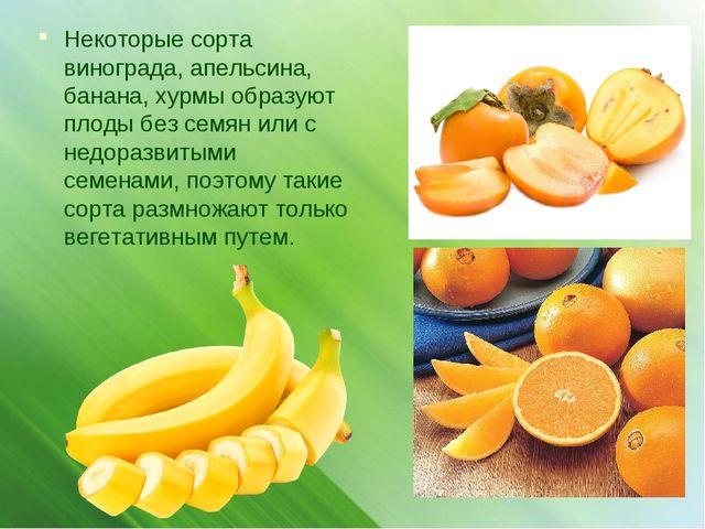Некоторые сорта винограда, апельсина, банана, хурмы образуют плоды без семян...