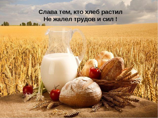 Слава тем, кто хлеб растил Не жалел трудов и сил !
