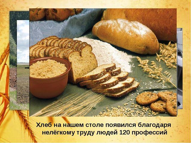Хлеб на нашем столе появился благодаря нелёгкому труду людей 120 профессий