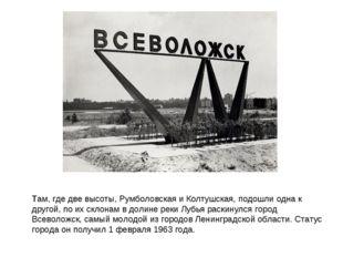 Тaм, где две высоты, Румболовская и Колтушская, подошли одна к другой, по их