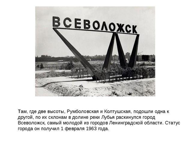 Тaм, где две высоты, Румболовская и Колтушская, подошли одна к другой, по их...
