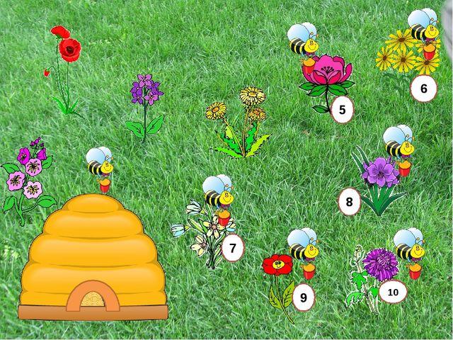 Плодовое тело споры грибница 1 Отгадай Как называется основная часть гриба: