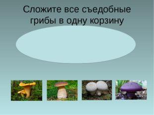 Сложите все съедобные грибы в одну корзину