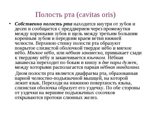 Полость рта (cavitas oris) Собственно полость рта находится кнутри от зубов и...