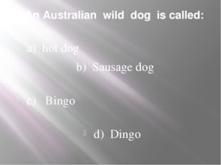 1. An Australian wild dog is called: a) hot dog b) Sausage dog c) Bingo d) Di