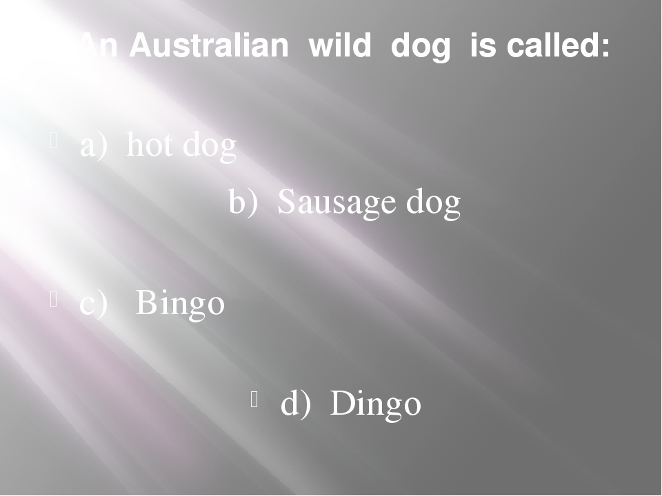 1. An Australian wild dog is called: a) hot dog b) Sausage dog c) Bingo d) Di...