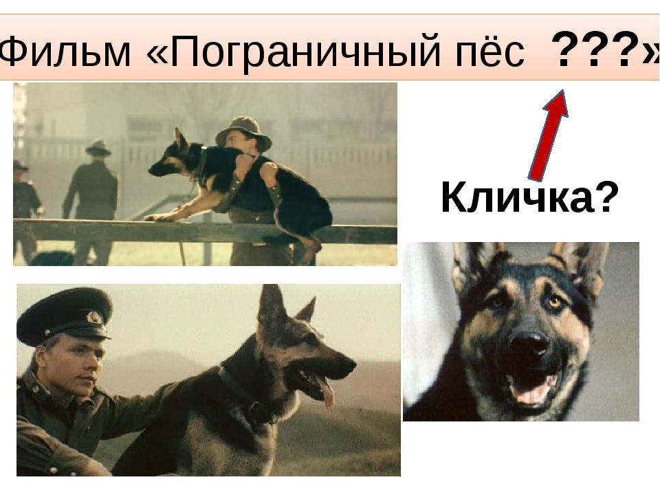 Фильм «Пограничный пёс ???» Кличка?