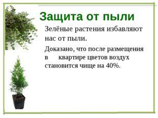 Защита от пыли Зелёные растения избавляют нас от пыли. Доказано, что после ра