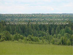 Пусть пока Воронежский заповедник и его лес – не эталон природы Черноземья, н