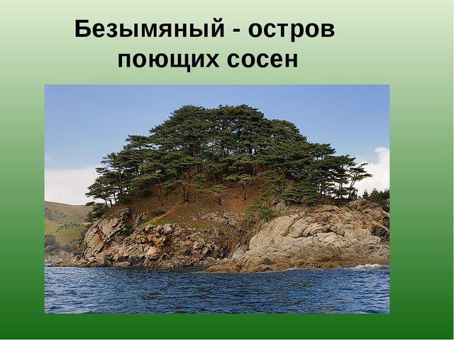 Безымяный - остров поющих сосен