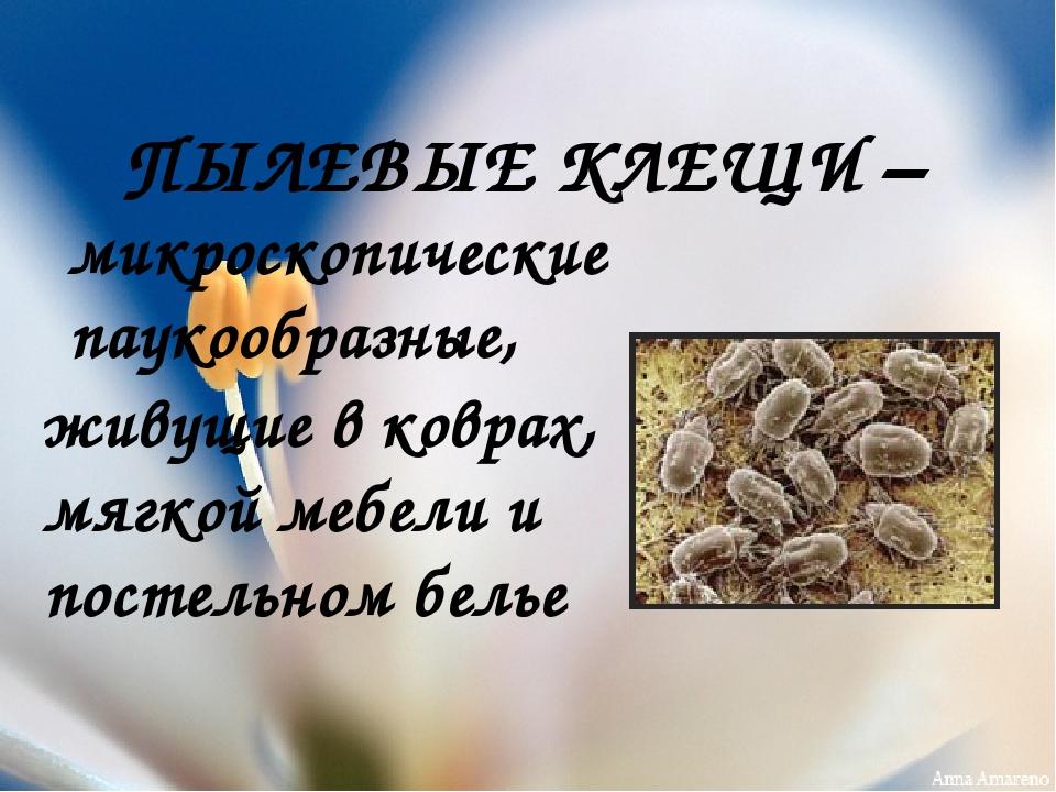 ПЫЛЕВЫЕ КЛЕЩИ – микроскопические паукообразные, живущие в коврах, мягкой мебе...