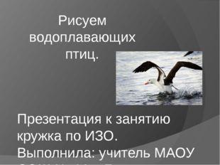 Рисуем водоплавающих птиц. Презентация к занятию кружка по ИЗО. Выполнила: уч