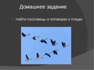 Домашнее задание Найти пословицы и поговорки о птицах