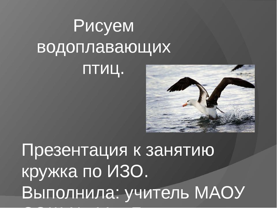 Рисуем водоплавающих птиц. Презентация к занятию кружка по ИЗО. Выполнила: уч...