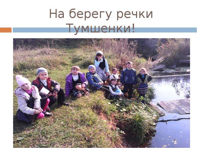 На берегу речки Тумшенки!