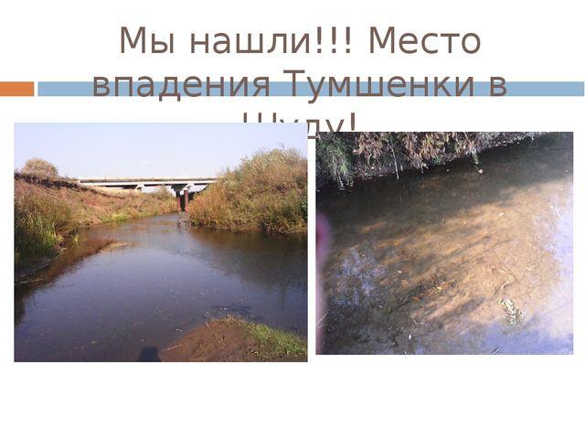 Мы нашли!!! Место впадения Тумшенки в Шуду!