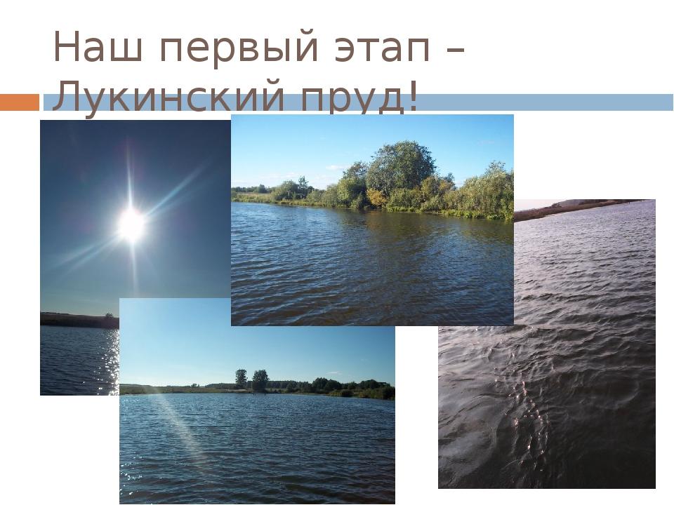 Наш первый этап – Лукинский пруд!