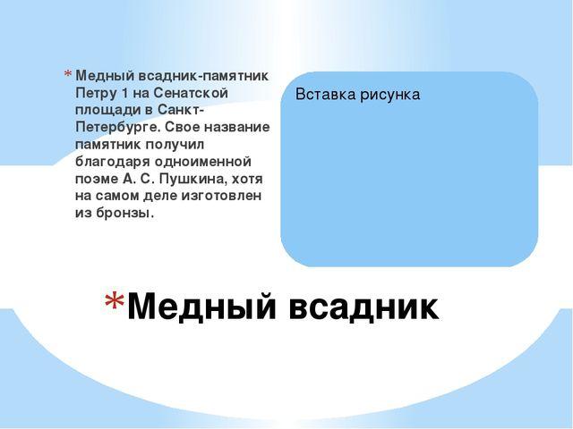 Медный всадник-памятник Петру 1 на Сенатской площади в Санкт-Петербурге. Свое...