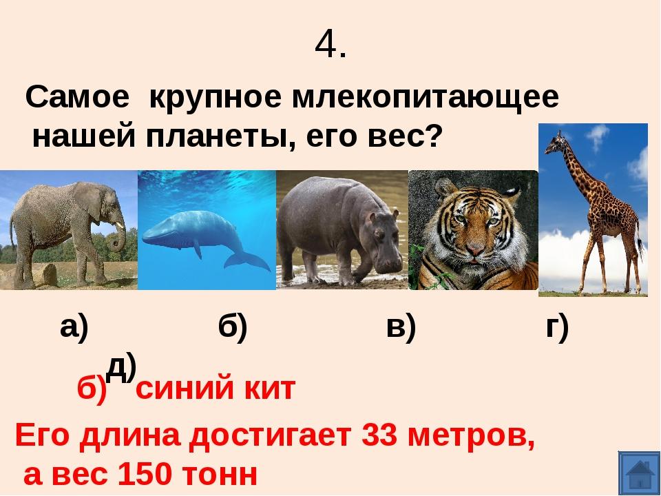 4. Самое крупное млекопитающее нашей планеты, его вес? а) б) в) г) д) б) сини...
