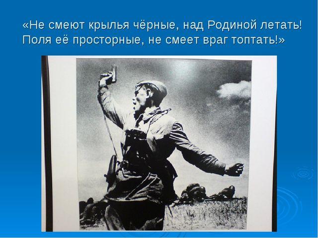 «Не смеют крылья чёрные, над Родиной летать! Поля её просторные, не смеет вра...
