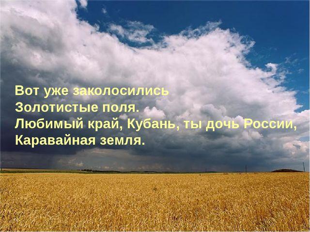 Вот уже заколосились Золотистые поля. Любимый край, Кубань, ты дочь России,...