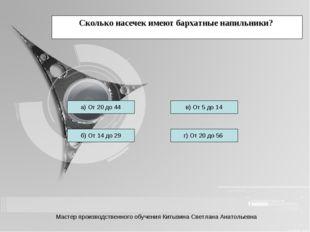 Сколько насечек имеют бархатные напильники? а) От 20 до 44 б) От 14 до 29 г)