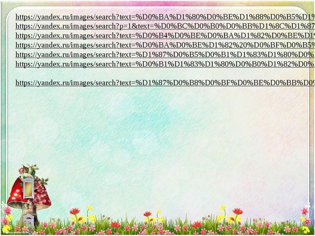 https://yandex.ru/images/search?text=%D0%BA%D1%80%D0%BE%D1%88%D0%B5%D1%87%D0%...