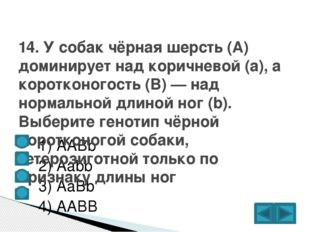 1) ААBb  2) Аabb  3) AaBb  4) AABB 14. У собак чёрная шерсть (А) домин