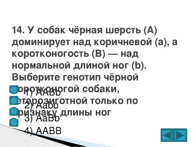 1) ААBb  2) Аabb  3) AaBb  4) AABB 14. У собак чёрная шерсть (А) домин...