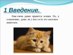 1 Введение.  Нам очень давно нравятся кошки. Но, к сожалению, дома не у вс