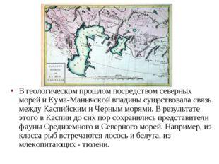 В геологическом прошлом посредством северных морей и Кума-Манычской впадины с