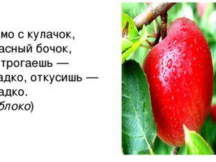 Само с кулачок, красный бочок, Потрогаешь— гладко, откусишь— сладко. (Яблоко)
